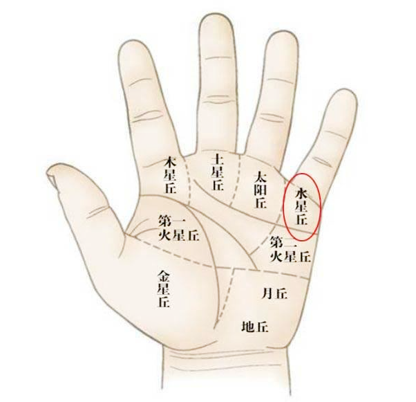 星纹的吉凶根据其出现在手掌上的部位而有所不同